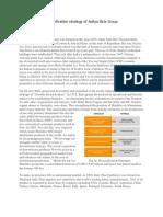 diversificationstrategyofadityabirlagroup-120109235357-phpapp02 (2)