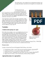 Onion - Wikipedia, The Free Encyclopedia2