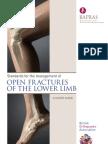 Boa Lower Limb 2009