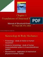 Kinesiology 1