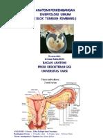 Embryologi Prodi Gigi-edit