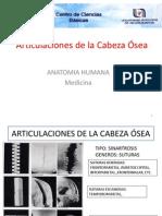 Brg.ii.05.Artic.de La Cabeza
