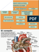 Aparatocirculatorio Pres.