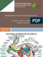 Cunicultura - Anatomia e Fisiologia Digestiva