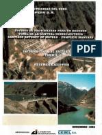 Estudio de Factibilidad Segundo Tunel de Central SAM.pdf