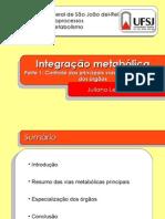 Aula 14 - Integracao Metabolica p.1