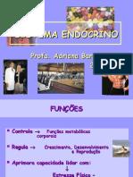 SISTEMA ENDÓCRINO E EXERCÍCIO
