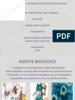 Enfermedades Causadas Por Agentes Biologicos