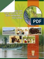 Presencia Del IIAP en El VRAE Diagram Ado v2003