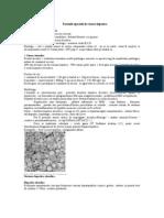 Curs 20 - Forme Speciale de Ciroza Hepatica