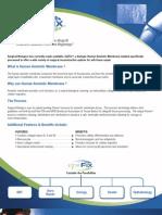 epifix brochure