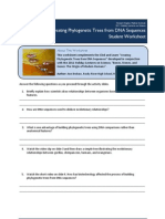 phylogenetic trees click learn worksheet
