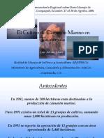 Presentacion Ecuador b