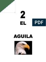 Leccion2Aguila