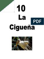 Leccion10CIGUENA