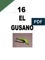 Leccion16Gusano