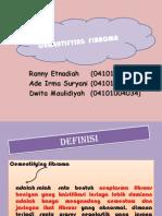 Tumor Cementyfying Fibroma