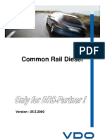 VDO-Siemens Common Rail_2009