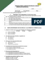 PRUEBA DE COMPRENSION DEL MEDIO Y CIENCIAS NATURALES 3° BÁSICO fila c