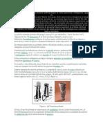 protesis roboticas