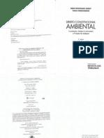 Direito constitucional ambiental - Deveres fundamentais e proteção do ambiente