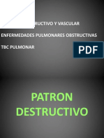 Sem 5 C-10 Patologia Pulmonar III