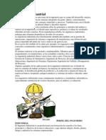 Ingeniería Industrial