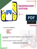Respiratory sys