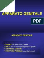 App Genital e