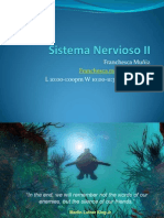 lab6-sistemanerviosoiibien-090307111551-phpapp01