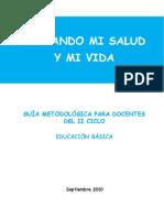 Guia Metodologica II