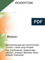HEMOROIDEKTOMI 12321124