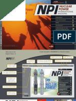 npi20130708-dl.pdf