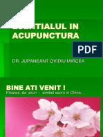 Esentialul in Acupunctura