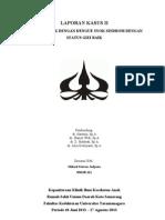 DSS case II Mikael Stevan.doc