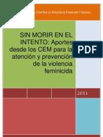 Aportes desde los CEM para la atención y prevención de la violencia femicida (version4)