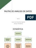 PAUTAS DE ANÁLISIS DE DATOS ESTADÍSTICOS