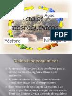 A6 Ciclos biogeoquímicos