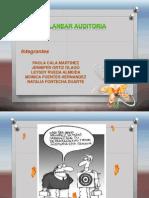 auditoriadesistemas-2-110318204921-phpapp01