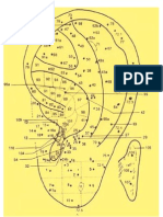 Cartograma Auricular
