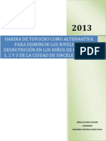 Proyecto Metodologia Harina de Topocho Argemiro