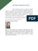 El Ministerio Del Medio Ambiente de Chile