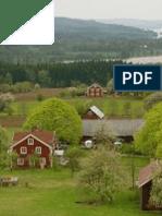 Hem till byn, polska for violin duet