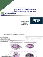 Bact Rias Intracelulares e Suas Implica Es Na Tuberculose Ehanse