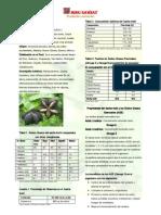 Una Ficha Botanica Del Sachainchi