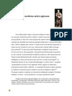 Analogii Cu Medicina Egipteana