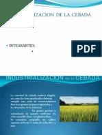 Industrializacion de La Cebada 1