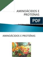 Aula 2 Aminoácisos e Proteinas