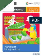Ficha Extendida 14 Hortalizas Hidroponicas