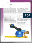 Fitball Manual